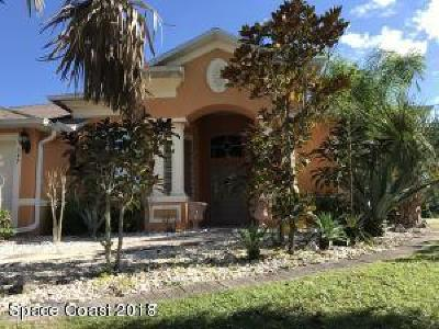 Palm Bay Single Family Home For Sale: 357 SW Santo Domingo Avenue SW