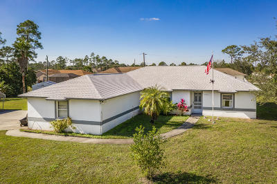 Palm Bay Single Family Home For Sale: 2920 Fisher Avenue SE