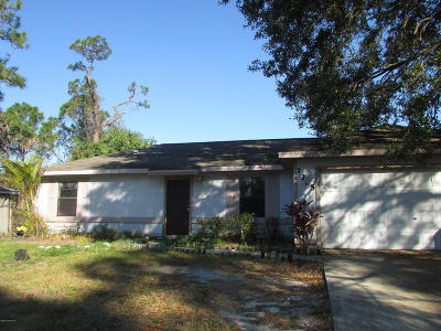 Palm Bay Single Family Home For Sale: 1365 Pavillion Street NW