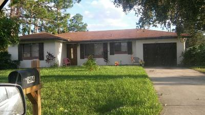 Palm Bay Single Family Home For Sale: 1614 Paisley Street NW