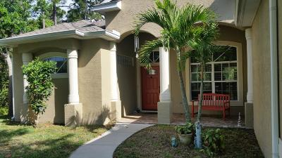 Merritt Island Single Family Home For Sale: 831 Environ Lane
