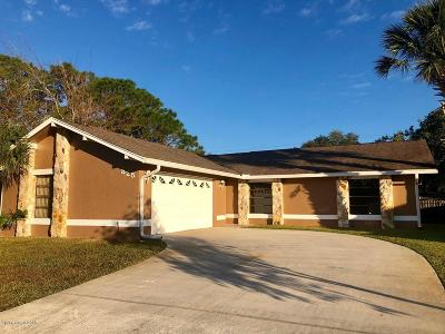Palm Bay Single Family Home For Sale: 825 NW Beacon Street NW