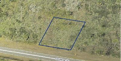 Residential Lots & Land For Sale: 1931 Cogan Drive SE