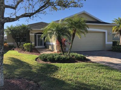 Palm Bay Single Family Home For Sale: 372 Gardendale Circle SE