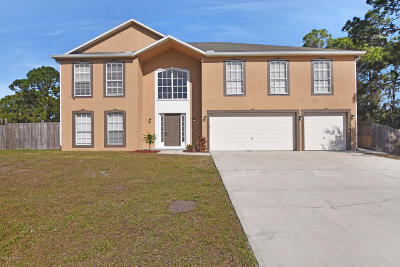 Palm Bay Single Family Home For Sale: 1639 Santos Street SE