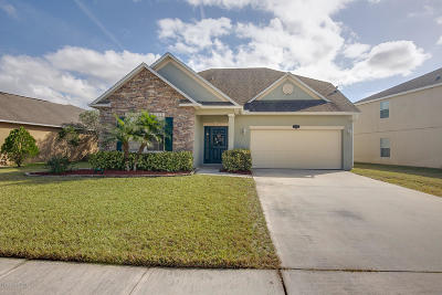 Brevard County Single Family Home For Sale: 1429 Mycroft Drive