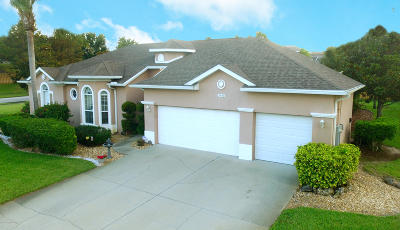 Merritt Island Single Family Home For Sale: 2448 Long Sandy Circle