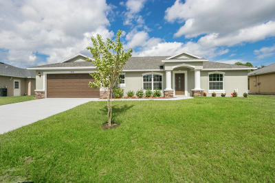 Palm Bay Single Family Home For Sale: 282 San Remo Road SW