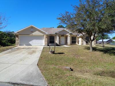 Palm Bay Single Family Home For Sale: 788 SE Arabia Road SE