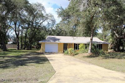 Palm Bay Single Family Home For Sale: 410 Nina Road NE