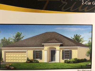 Palm Bay Single Family Home For Sale: 1114 Underhill Avenue SE