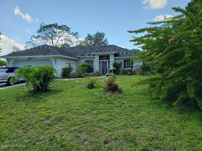 Palm Bay Single Family Home For Sale: 1560 Rainsville Street SE