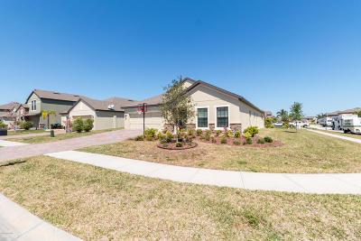Palm Bay Single Family Home For Sale: 697 Dillard Drive SE