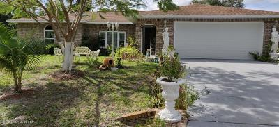 Palm Bay Single Family Home For Sale: 842 Isar Avenue NW