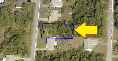 Brevard County Residential Lots & Land For Sale: 715 Scotten Avenue SW