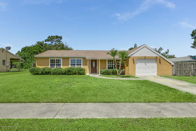 Palm Bay Single Family Home For Sale: 1290 Freil Road NE