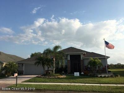 Palm Bay Single Family Home For Sale: 193 Brandy Creek Circle SE