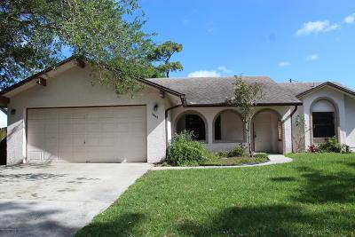 Palm Bay Single Family Home For Sale: 1597 Sutschek Street NE