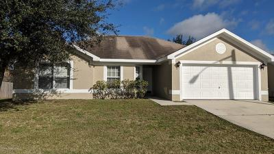 Palm Bay Single Family Home For Sale: 243 Emerson Drive NW