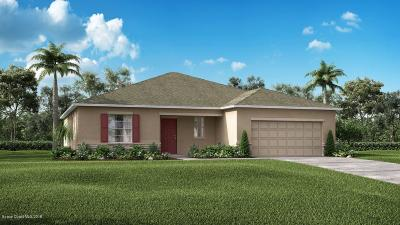 Merritt Island Single Family Home For Sale: 4455 Hebron Drive