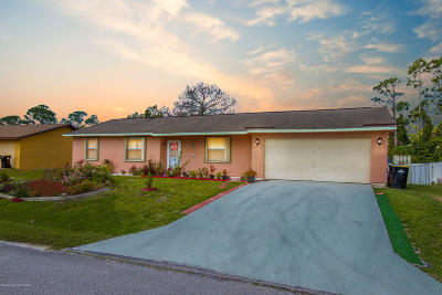 Palm Bay Single Family Home For Sale: 1390 NW Camas Avenue NW