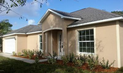 Palm Bay Single Family Home For Sale: 842 Clifton Road SE #11