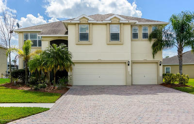 Palm Bay Single Family Home For Sale: 142 Broyles Drive SE