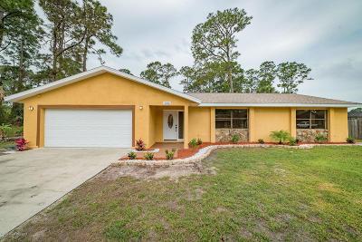 Palm Bay Single Family Home For Sale: 886 Driftwood Avenue SE