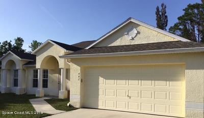 Palm Bay Single Family Home For Sale: 442 Avocado Road NW