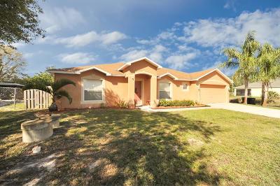 Palm Bay Single Family Home For Sale: 531 Olsmar Street SW