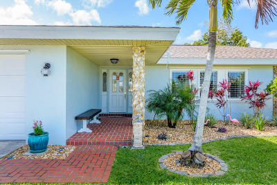 Brevard County Single Family Home For Sale: 230 Shore Lane