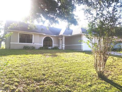 Palm Bay Single Family Home For Sale: 923 Glencove Avenue NW