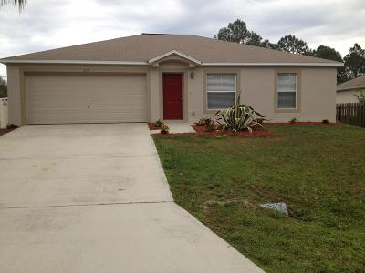 Palm Bay Single Family Home For Sale: 237 Jefferson Avenue NW
