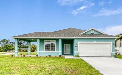 Palm Bay Single Family Home For Sale: 1186 Cordova Street SE