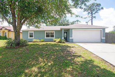 Palm Bay Single Family Home For Sale: 1118 Wesberry Street SE