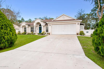 Palm Bay Single Family Home For Sale: 823 Kalif Avenue SW
