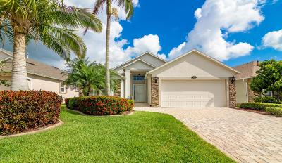 Brevard County Single Family Home For Sale: 1691 Lago Mar Drive
