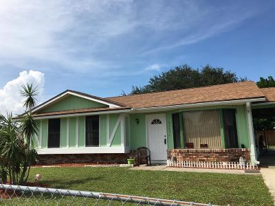 Palm Bay Single Family Home For Sale: 3207 NE Haddon Avenue NE