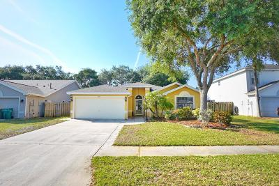 Single Family Home For Sale: 7237 Hammock Lakes Drive