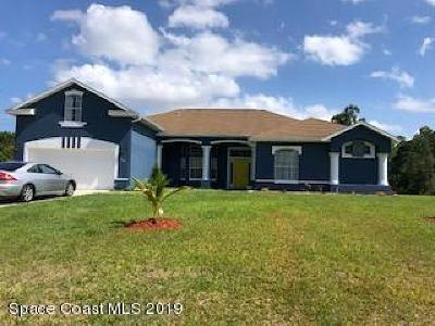 Brevard County Single Family Home For Sale: 966 SW San Rafael Road SW