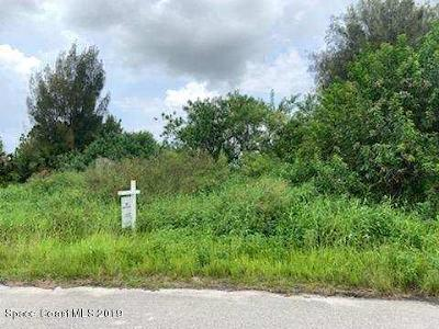 Brevard County Residential Lots & Land For Sale: 1399 Darrow Road SW