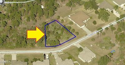 Brevard County Residential Lots & Land For Sale: 625 Floyd Street SE