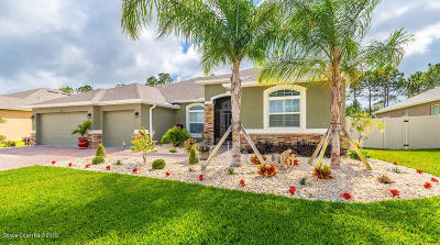Palm Bay Single Family Home For Sale: 539 Easton Forest Circle SE