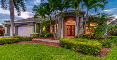 Brevard County Single Family Home For Sale: 4089 Sand Ridge Drive