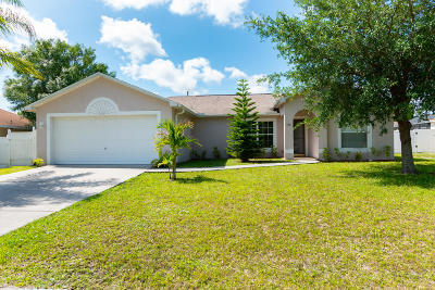 Palm Bay Single Family Home For Sale: 582 Nackman Road NW