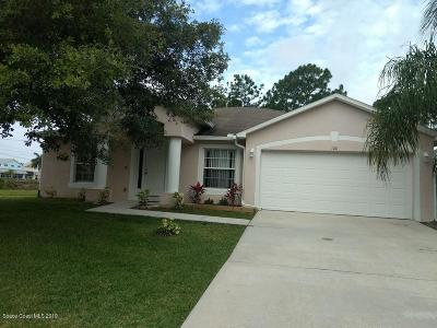 Palm Bay Single Family Home For Sale: 100 Buswell Avenue NE