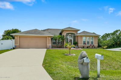 Palm Bay Single Family Home For Sale: 100 District Street SE
