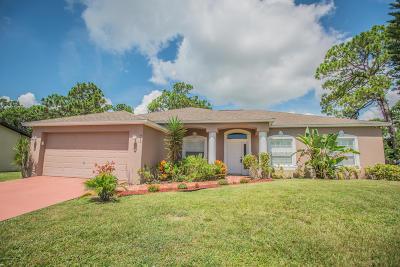 Palm Bay Single Family Home For Sale: 450 Bargello Avenue SE