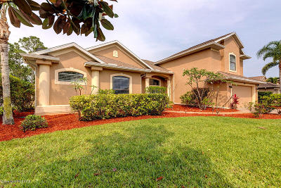 Palm Bay Single Family Home For Sale: 250 Ridgemont Circle SE