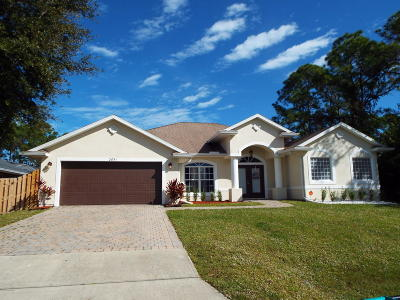Palm Bay Single Family Home For Sale: 2651 Tepee Avenue SE